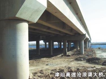 津汕高速沧浪渠大桥
